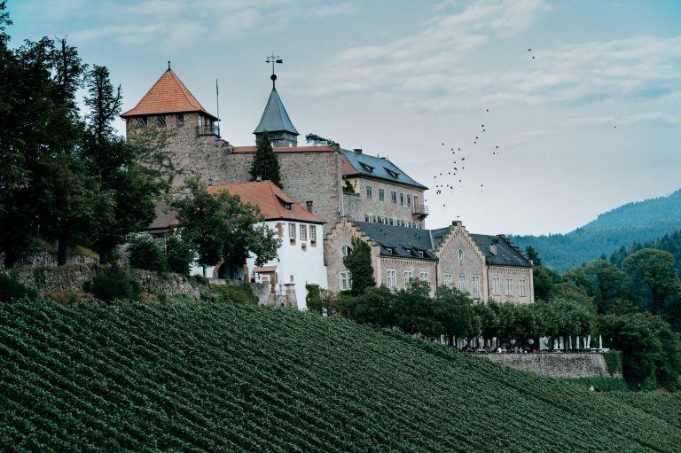 Schloss Eberstein mit Weinberge